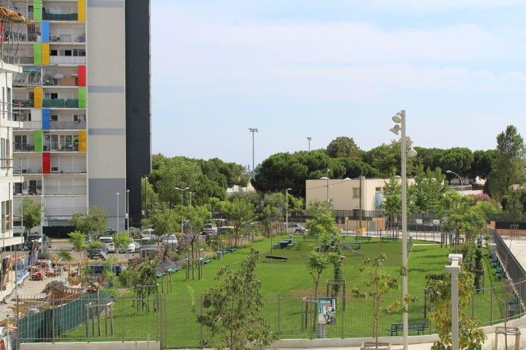 Nouveau square des jacarandas